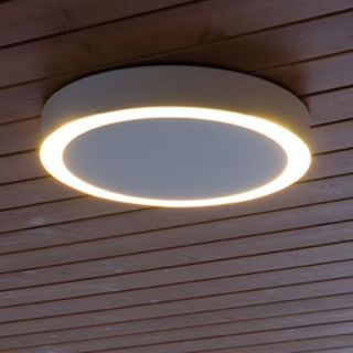 Amigo Medium Indoor Outdoor Ceiling Light