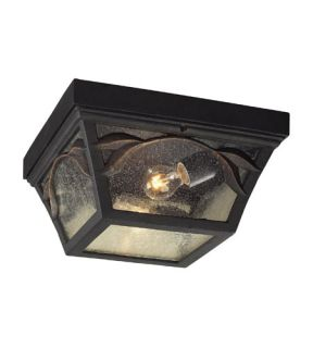 Hamilton Park 2 Light Outdoor Ceiling Lights in Weathered Charcoal 42046/2
