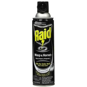 Raid 14 oz. Wasp and Hornet Aerosol Spray Killer SCJ617744