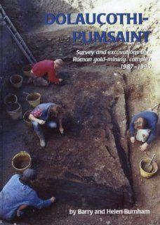 Dolaucothi Pumsaint Survey and Excavation at a Roman gold mining complex 1987 1999 (9781842171127) Barry C. Burnham, Helen Burnham Books