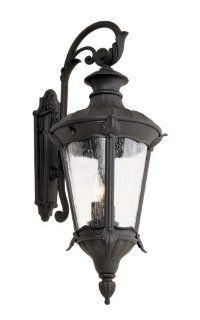 Trans Globe 40162 SWI Imperial Leaf   Two Light Outdoor Wall Mount, Swedish Iron Finish with Clear Seeded Glass   Wall Sconces