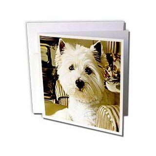 gc_609_1 Dogs West Highland Terrier   Westie   Greeting Cards 6 Greeting Cards with envelopes  Blank Greeting Cards
