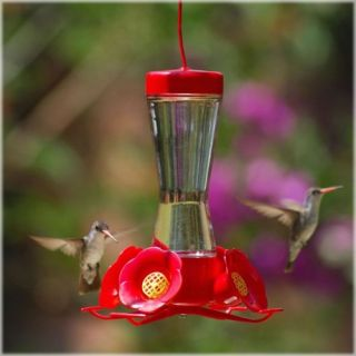 Perky Pet Hummingbird Pinch Waist Glass Bird Feeder   Bird Feeders
