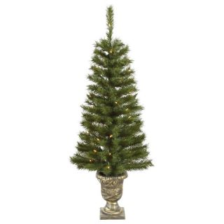 Vickerman 4 ft. Potted Walton Pine Pre Lit Christmas Tree   Christmas Trees
