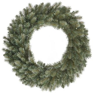 Vickerman 24 in. Colorado Blue Spruce Wreath   Christmas Wreaths