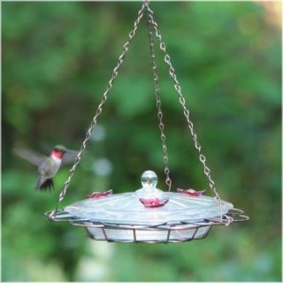 Oasis Hummingbird Feeder   Bird Feeders