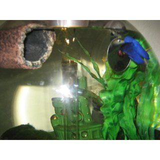 Zoo Med Floating Betta Exercise Mirror  Betta Leaf