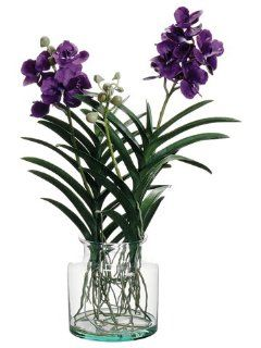 "29"" Vanda Orchid Plant in Glass Vase Violet  Flowering Plants  Patio, Lawn & Garden"