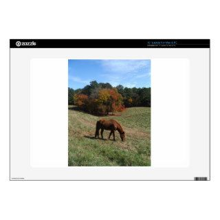 "Brown horse with fall trees 15"" laptop decal"