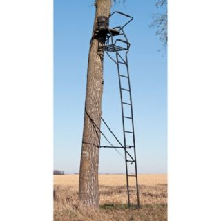 Big Game Arch Rival 19 Ladderstand 444017
