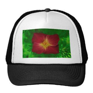 Red Cosmos Flower Design Mesh Hat