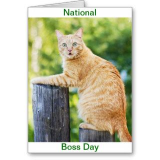 National Boss Day Greeting Card