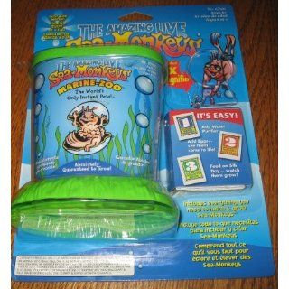 The Amazing Live Sea Monkeys Marine Zoo Blister Pack by Big Time Toys Toys & Games