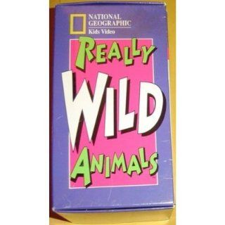 set 6 videosNational Geographic's Really, National Geographic's Really Wild Animals Deep Sea Dive, National Geographic's Really Wild Animals Wonders Down Under Wild Animals Swinging Safari, National Geographic's Really Wild Animals Adv