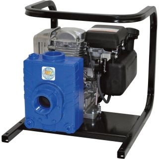 IPT Cast Iron Self-Priming Ag/Water Pump — 2in. Ports, 127cc Briggs & Stratton 550 Series Engine, Model# 2AG4ACV  Engine Driven Clear Water Pumps
