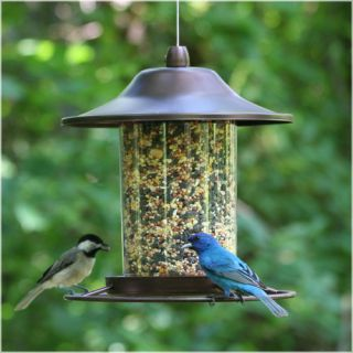 Perky Pet Panorama Hopper Bird Feeder