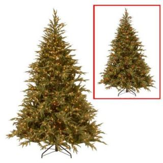 National Tree Company 6 ft. Frasier Grande Artificial Christmas Tree with Dual Color LED Lights PEFG4 330LD 60