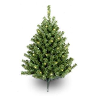 3 foot Eastern Spruce Tree with 50 Clear Lights    National Tree Company